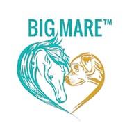 BigMare.com